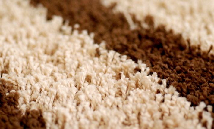 Carpet Cleaning Pros